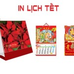 in-lich-tet-gia-re-2015