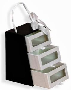 Thiết kế in túi giấy đựng quà cao cấp.
