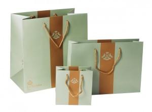 Giới thiệu một mẫu in túi giấy giá rẻ cho shop thời trang.