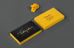 Thiết kế in card visit rẻ đẹp tại công ty in ấn Đại Dương.